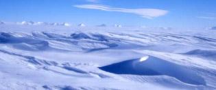 DIXIE DANSERCOER Antarctica